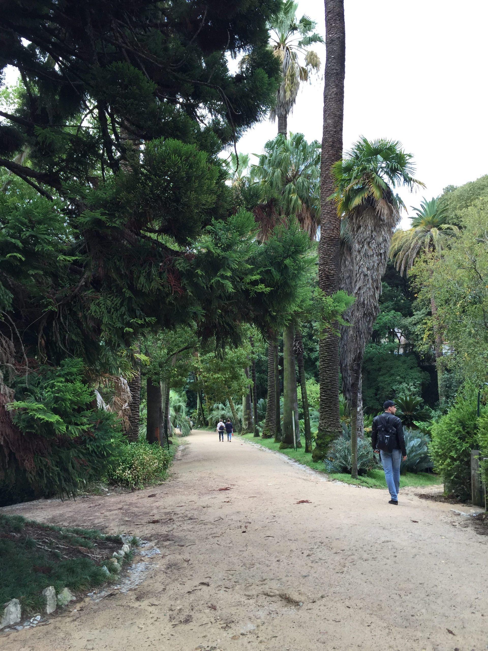 Il Giardino Botanico Lisbona