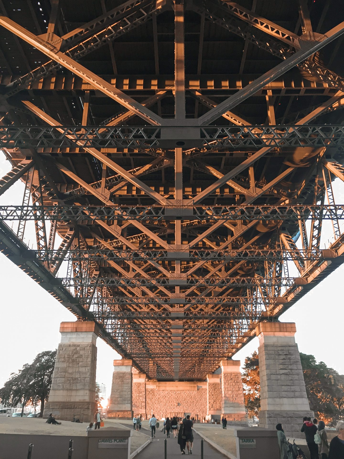 sydney harbour bridge visto da the rock